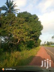 Arable Land on the Highway.   Land & Plots For Sale for sale in Kwale, Tsimba Golini
