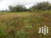 1 Acre Land For Sale At Makuyu Ciumbu In Murang'a County. | Land & Plots For Sale for sale in Busia, Bunyala West (Budalangi)