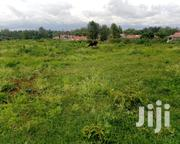 103 Acres of Land for Sale in Muthaiga North Estate.   Land & Plots For Sale for sale in Nairobi, Nairobi Central
