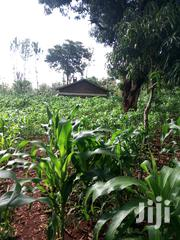 Rural Home In 2 Asres Of Free Hold. | Commercial Property For Sale for sale in Tharaka-Nithi, Karingani
