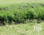 1/8 an Acre Touching Main Rd Rimpa-Olekasasi at Kambimoto | Land & Plots For Sale for sale in Kajiado, Ongata Rongai