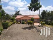 An Executive 3 Bedroom Master Ensuite Bungalow on 1/2 Acre in Ongata. | Houses & Apartments For Sale for sale in Kajiado, Ongata Rongai