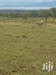 Selling 3 Acres of Land 8.8m Naivasha | Land & Plots For Sale for sale in Nakuru, Naivasha East