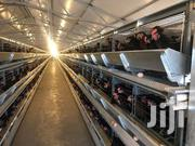 Battery Chicken Cages | Farm Machinery & Equipment for sale in Nairobi, Utalii