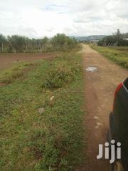 1 Acre For Sale In Kikopey Gilgil | Land & Plots For Sale for sale in Nakuru, Gilgil