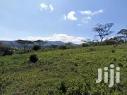 Land for Sale Roimen Matasia | Land & Plots For Sale for sale in Kajiado, Ngong