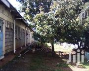 Spacious Single Self | Houses & Apartments For Rent for sale in Uasin Gishu, Kimumu