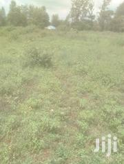 Very Nice Sagana Plots Past Hill Crest Academy 400 Mtrs From Tarmac | Land & Plots For Sale for sale in Kirinyaga, Kariti