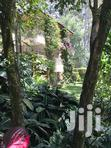 Kitisuru House for Rent Mansion Leafy Quiet Own Compound Parking | Houses & Apartments For Rent for sale in Kitisuru, Nairobi, Kenya