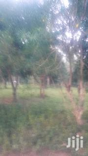A Prime Plot for Sale, 40ft by 100ft Nyali Went With Seaview | Land & Plots For Sale for sale in Mombasa, Bamburi