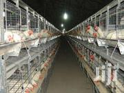 128 Chicken Cages | Farm Machinery & Equipment for sale in Nairobi, Nairobi Central