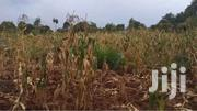 2 Acer's | Land & Plots For Sale for sale in Machakos, Tala