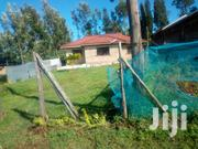 Direct Transfer Of The Title | Houses & Apartments For Rent for sale in Migori, Suna Central
