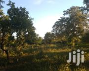 Land One and a Half Acres for Sale | Land & Plots For Sale for sale in Makueni, Wote