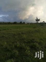 50x100 Plots in Naivasha Mirera Area With Electricity and Water on Sit | Land & Plots For Sale for sale in Nakuru, Naivasha East
