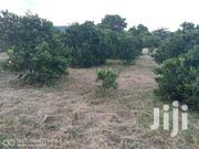 One And A Half Acres, Nzueni Wote | Land & Plots For Sale for sale in Makueni, Wote