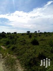 7 Acres 200m Off Kibao Kiche Gotani Rd | Land & Plots For Sale for sale in Kilifi, Mariakani