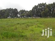 6 Acres Prime Agricultural Land at Timau | Land & Plots For Sale for sale in Meru, Timau