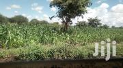 Gilgil 6 Acres Land On Sale | Land & Plots For Sale for sale in Nakuru, Gilgil