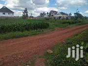 1/4 Acre Plot In Thome Estate For Sale   Land & Plots For Sale for sale in Nairobi, Nairobi Central