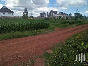 1/4 Acre Plot In Thome Estate For Sale