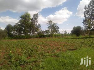 1/4 Acre Plot For Sale In Garden Estate.