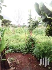 Plot for Sale at Muthatari Junction | Land & Plots For Sale for sale in Embu, Mbeti North