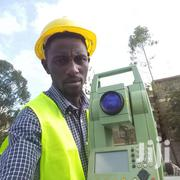 Surveryor Or Section Manager   Construction & Skilled trade CVs for sale in Nairobi, Westlands