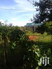 Selling 2 Acre Parcel of Land at Kabaa Market | Land & Plots For Sale for sale in Machakos, Kithimani