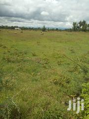 200 Acres In Biithi, Laikipia | Land & Plots For Sale for sale in Laikipia, Nanyuki