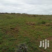 1/8acre Plots   Land & Plots For Sale for sale in Laikipia, Ngobit