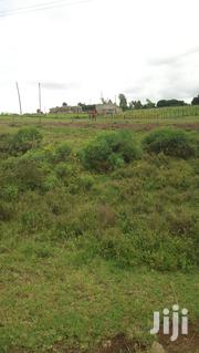 Nyeri Mweiga 1/4 Plot | Land & Plots For Sale for sale in Nyeri, Kamakwa/Mukaro