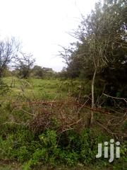 Nanyuki Segera 38 Acres | Land & Plots For Sale for sale in Nyeri, Kamakwa/Mukaro