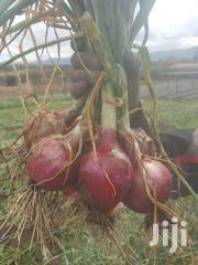 Onions | Meals & Drinks for sale in Laikipia, Nanyuki