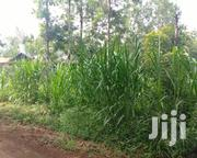 50 By 100 In Gatunduri, Dispensary. | Land & Plots For Sale for sale in Embu, Mbeti North