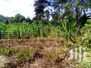 1 Acre For Sale | Land & Plots For Sale for sale in Kiambu, Ngoliba