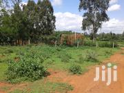 0.150 Plot In Nanyuki For Lease 5to 10yrs | Land & Plots for Rent for sale in Laikipia, Nanyuki