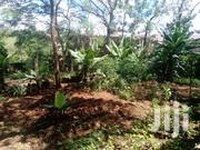 5 Bedroom House For Sale In Muthaiga North Estate.   Houses & Apartments For Sale for sale in Nairobi, Nairobi Central