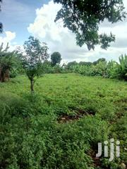 Narumoro Nyeri Nanyuki Land For Sale | Land & Plots For Sale for sale in Nyeri, Naromoru Kiamathaga