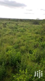50 Acres With River Frontage | Land & Plots For Sale for sale in Trans-Nzoia, Makutano