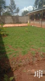 Landscaping, And Compound Maintenance | Landscaping & Gardening Services for sale in Nairobi, Karura