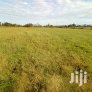 4 Acres Land for Sale in Njoro | Land & Plots For Sale for sale in Nakuru, Njoro