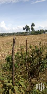 Land 3 Acres in Waitaluk 2m Per Acre 500 Mitres From Main Road | Land & Plots For Sale for sale in Trans-Nzoia, Waitaluk
