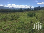 Shamba , Farm ,Best Land For Lease | Land & Plots for Rent for sale in Nakuru, Subukia