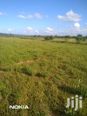 Selling a 40 Acre Parcel of Land | Land & Plots For Sale for sale in Machakos, Kithimani