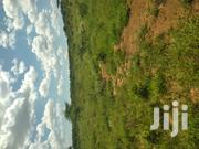 Land for Sale in Ewaso Kedong   Land & Plots For Sale for sale in Kajiado, Ewuaso Oonkidong'I