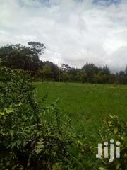20 Acres At Nyandarua | Land & Plots For Sale for sale in Nyandarua, Kipipiri