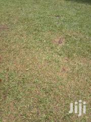 2 Acres Land At Kandara Ruona | Land & Plots For Sale for sale in Murang'a, Kagundu-Ini