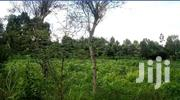 33 by 76 Commercial Plot for Sale Along Thika Road in Ngumba Estate | Land & Plots For Sale for sale in Nairobi, Nairobi Central