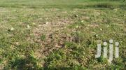 100 Acres Malindi | Land & Plots For Sale for sale in Kilifi, Malindi Town